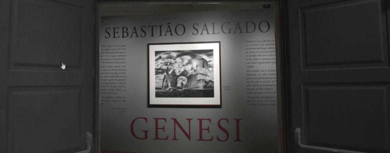 SALGADO 1